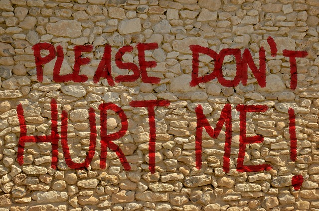 """Brick wall with """"Don't Hurt Me!"""" written"""