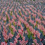 Memorial Day U.S. flags